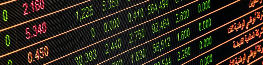 Wat is Valutarisico - Erna Erkens Valuta Advies