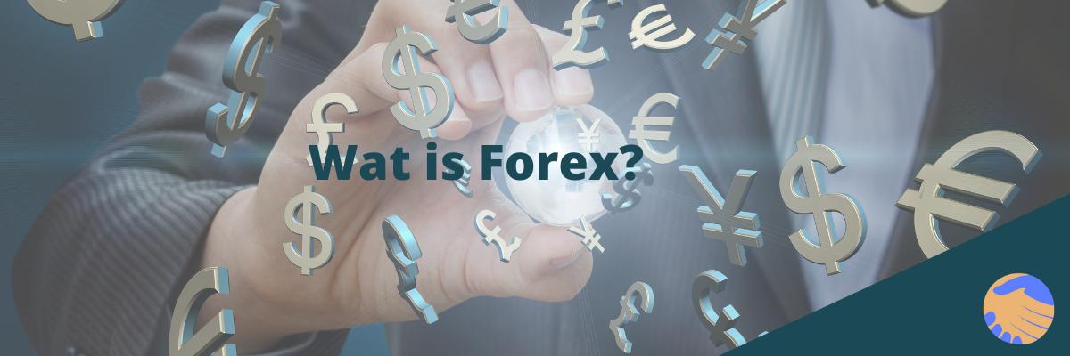 Wat is Forex? Erna Erkens Valuta Advies